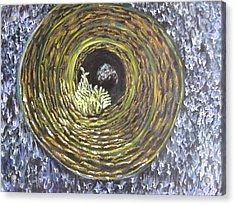 Fire And Ice Acrylic Print by Sujata Tibrewala