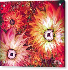 Fire Asters Acrylic Print by Mindy Sommers