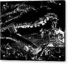 Acrylic Print featuring the photograph Fire Black And White by Britt Runyon