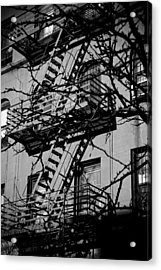 Fire Escape Tree Acrylic Print by Darren Martin