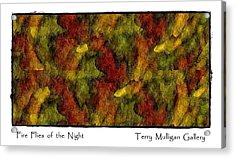 Fire Flies Of The Night Acrylic Print by Terry Mulligan