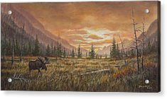 Acrylic Print featuring the painting Fire In The Sky by Kim Lockman