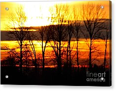 Fire In The Sky Acrylic Print by Nick Gustafson