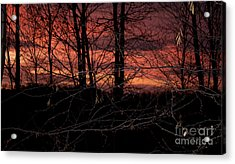 Fire In The Sky Acrylic Print by Robert Sander