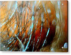 Fire In The Wind Acrylic Print by JCYoung MacroXscape