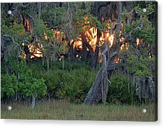 Acrylic Print featuring the photograph Fire Light Jekyll Island 02 by Bruce Gourley