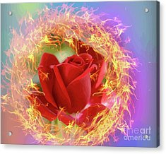 Fire Of Desire Acrylic Print