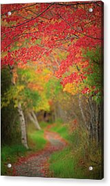 Fire Red Path  Acrylic Print