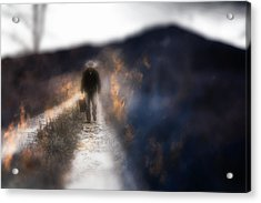 Fire Road Acrylic Print by Gray  Artus