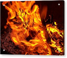 Fire Within Acrylic Print by Bill Werle