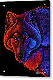 Fire Wolf Acrylic Print