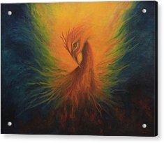 Firebird Acrylic Print by Marina Petro