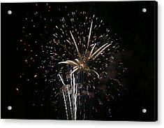 Firework In Action Acrylic Print by Magda Levin-Gutierrez