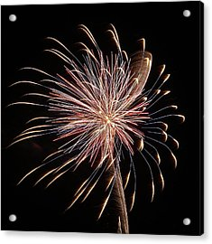 Fireworks From A Boat - 16 Acrylic Print