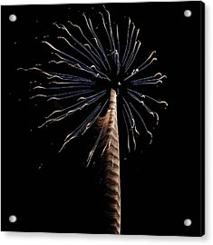 Fireworks From A Boat - 6 Acrylic Print