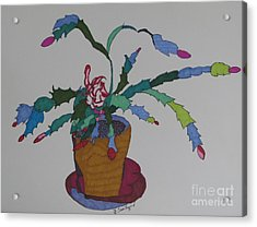 First Bloom Christmas Cactus Acrylic Print by James SheppardIII