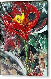 First Encaustic Acrylic Print by Lynda McDonald