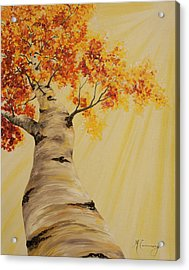 First Fall Light Acrylic Print