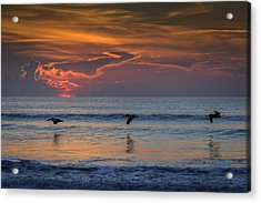 Acrylic Print featuring the photograph First Flight First Light by Steven Sparks