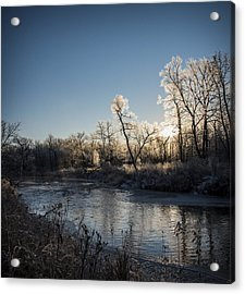 Acrylic Print featuring the photograph First Frost by Annette Berglund