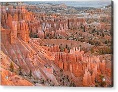 First Light, Bryce Canyon National Park Acrylic Print