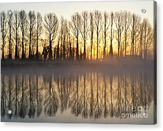 First Misty Light Acrylic Print by Tim Gainey