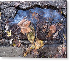 First Morning Of Ice In Fall 2  Acrylic Print by Lyle Crump