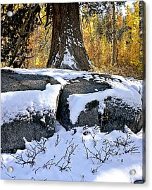 Acrylic Print featuring the photograph First Snow by Larry Darnell