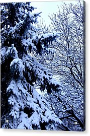 First Snow Of The Season Acrylic Print