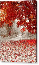 First Snowfall In Duluth Acrylic Print by Helen Stapleton