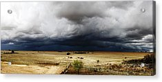 First Spring Rain Acrylic Print by Hendrik Maree