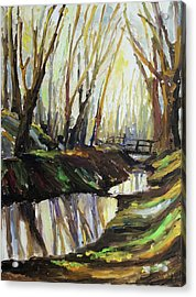 First Sun Of Spring Acrylic Print by Barbara Pommerenke