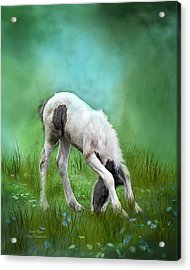 First Taste Acrylic Print by Carol Cavalaris
