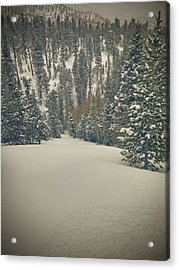 Acrylic Print featuring the photograph first turns Friday  by Mark Ross