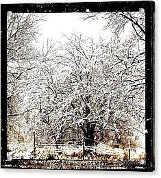First Winter Snow Acrylic Print