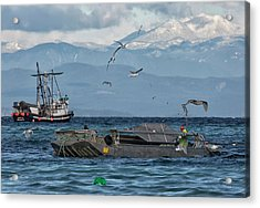 Acrylic Print featuring the photograph Fish Are Flying by Randy Hall