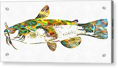 Fish Art Catfish Acrylic Print by Dan Sproul