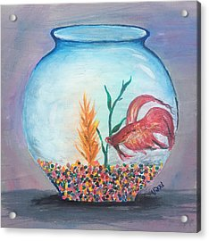 Fish Bowl Acrylic Print