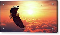 Fish Eagle Flying Above Clouds Acrylic Print by Johan Swanepoel