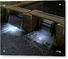 Fish Hatchery At Bennett Springs Acrylic Print