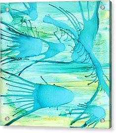 Fish N Shrimp Acrylic Print