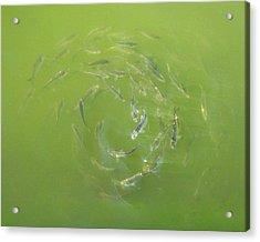 Fish Portal Acrylic Print by Adam Long