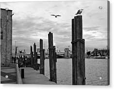 Acrylic Print featuring the photograph Fishery by Kathleen Stephens