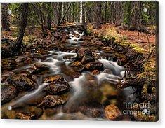 Fishhook Creek Waterscape Art By Kaylyn Franks Acrylic Print