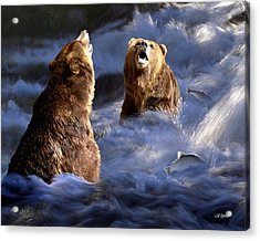 Fishing Alaska Acrylic Print by Bill Stephens
