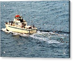 Acrylic Print featuring the photograph Fishing And Seagulls by Randall Weidner