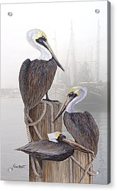 Fishing Buddies Acrylic Print by Kevin Brant