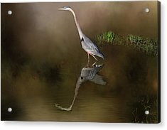 Acrylic Print featuring the photograph Fishing In The Fog by Donna Kennedy