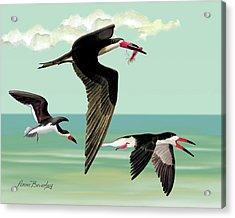Fishing In The Gulf Acrylic Print