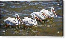Fishing Line Acrylic Print